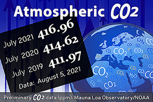 Atmospheric CO2 data